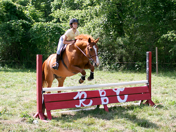 young girl jumping horse