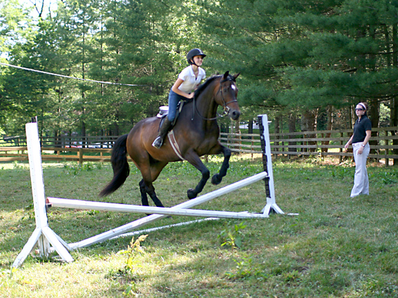 equestrian jumping girl