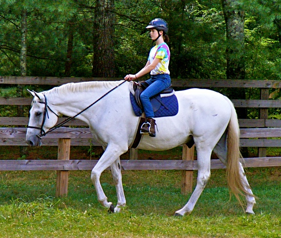 Youth Horse Camp rider