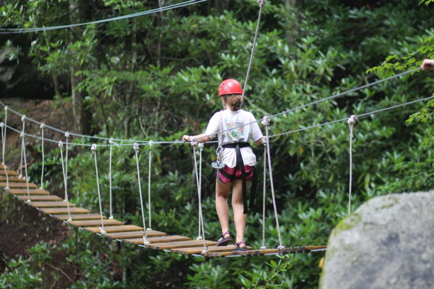 High ropes adventure bridge