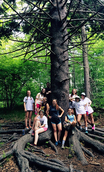Huge Tree and Camp Girls