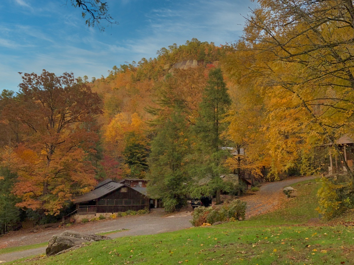 Fall view of camp forest