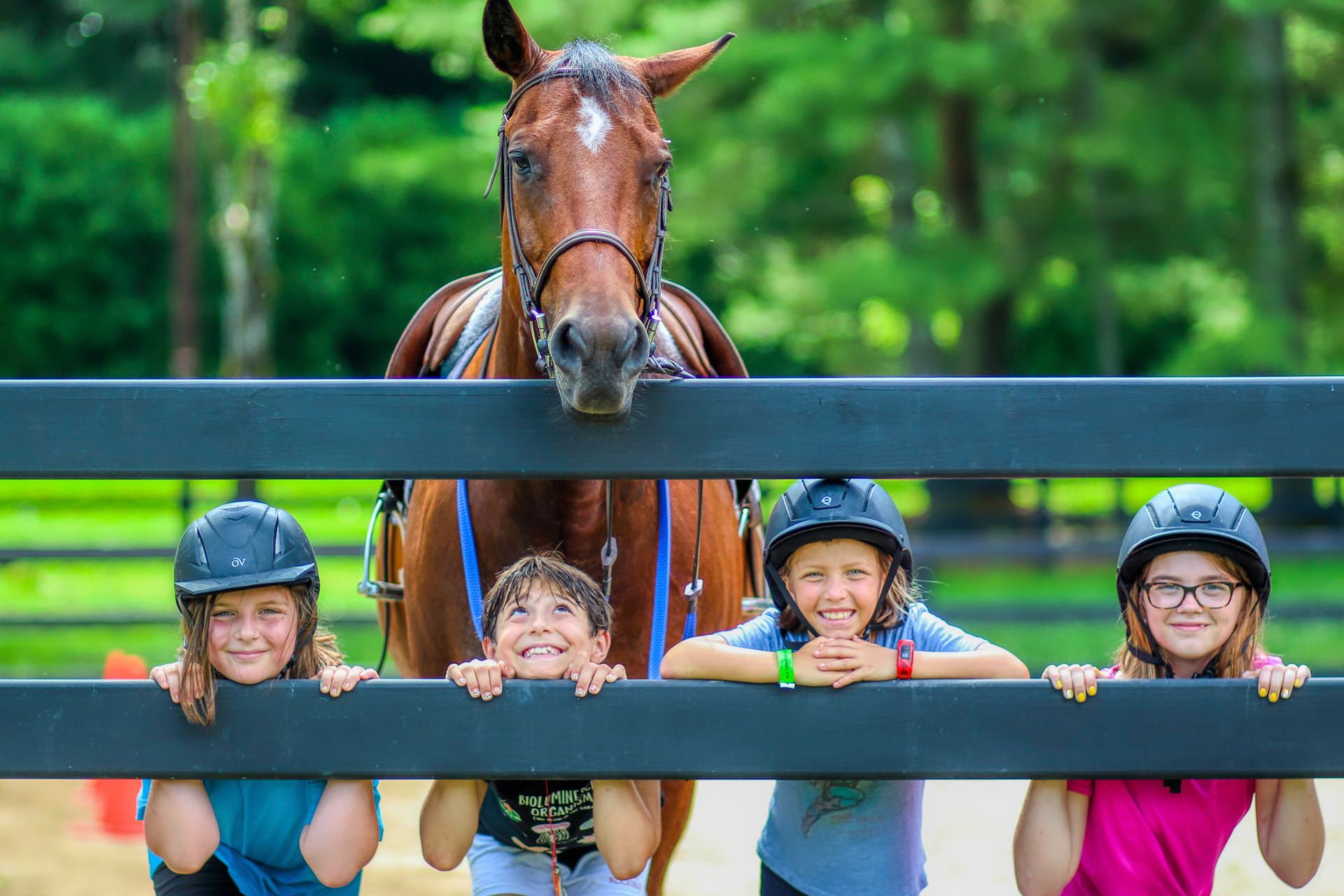 summer camp children and horse
