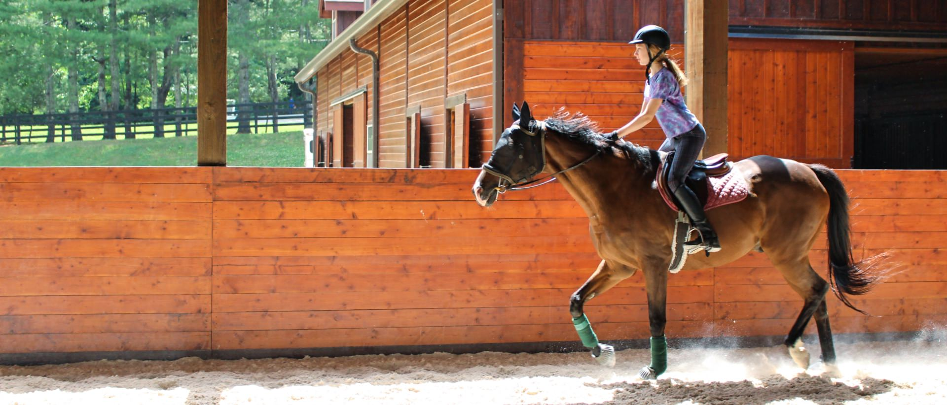 girl horse camp riding in arena